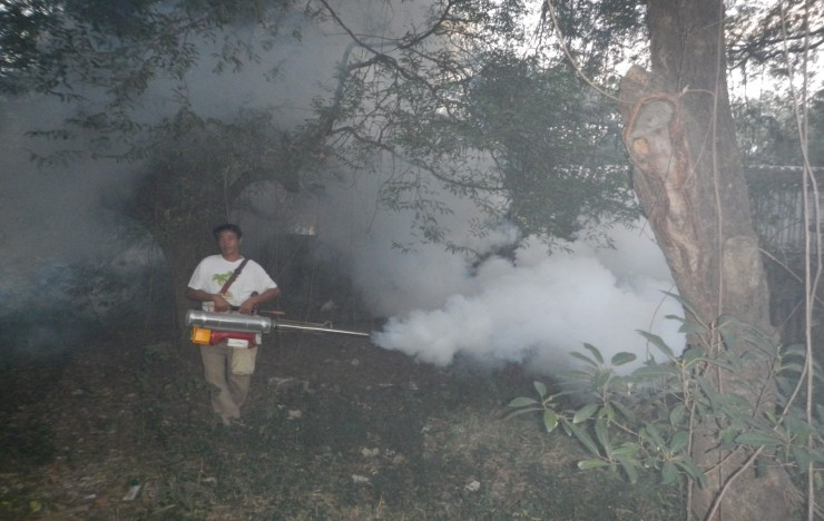 Mosquito Eradication